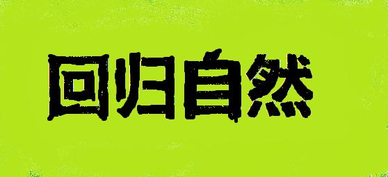 kineski-logo