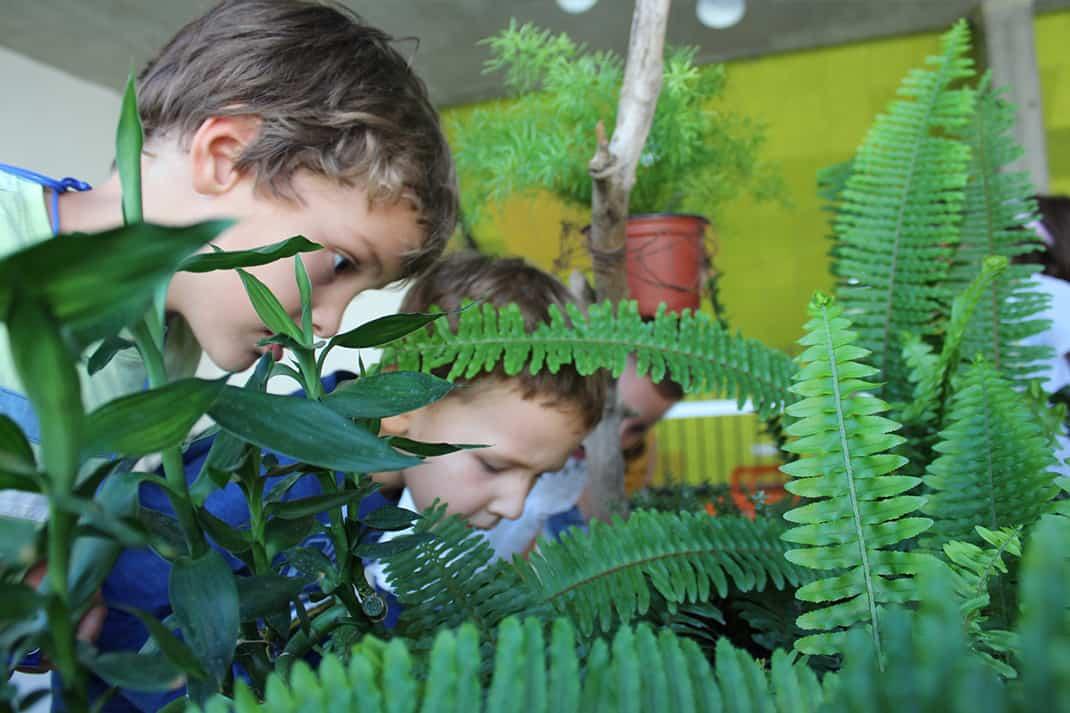 Biljke i životinje vrtica Povratak prirodi