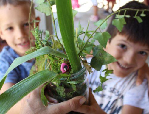 Dan fascinacije biljkama u Povratku prirodi: LABORATORIJSKA BOTANIKA