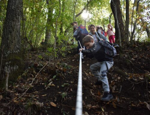Izveštaj sa terenske nastave u dolini reke Ribnice